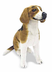 melissa doug beagle plush obedient attentive