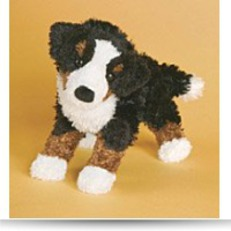 Buy Miranda Bernese Mountain Dog
