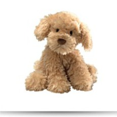 Save Nayla 10 5 Cockapoo Plush
