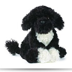 Signature Portuguese Water Dog