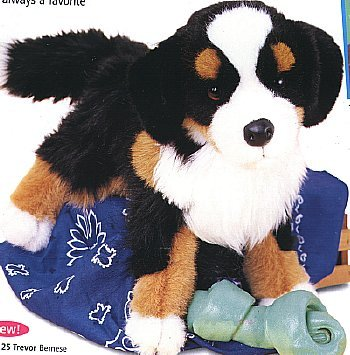 b277cce709c Compare - Ty Beanie Boos Buddy vs Trevor Bernese Mountain Dog
